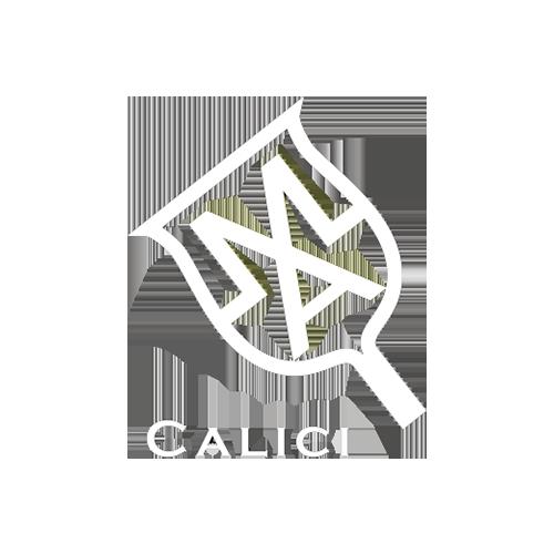 logo-calici-bianco