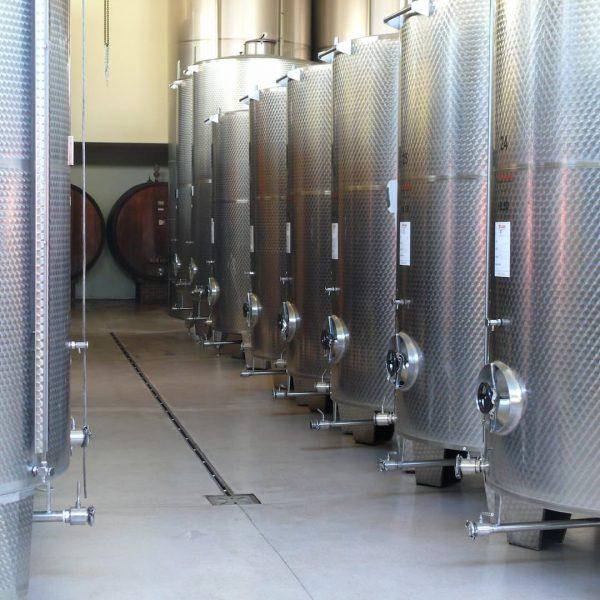 vasche-vino-Arione-Mario-casa-vinicola